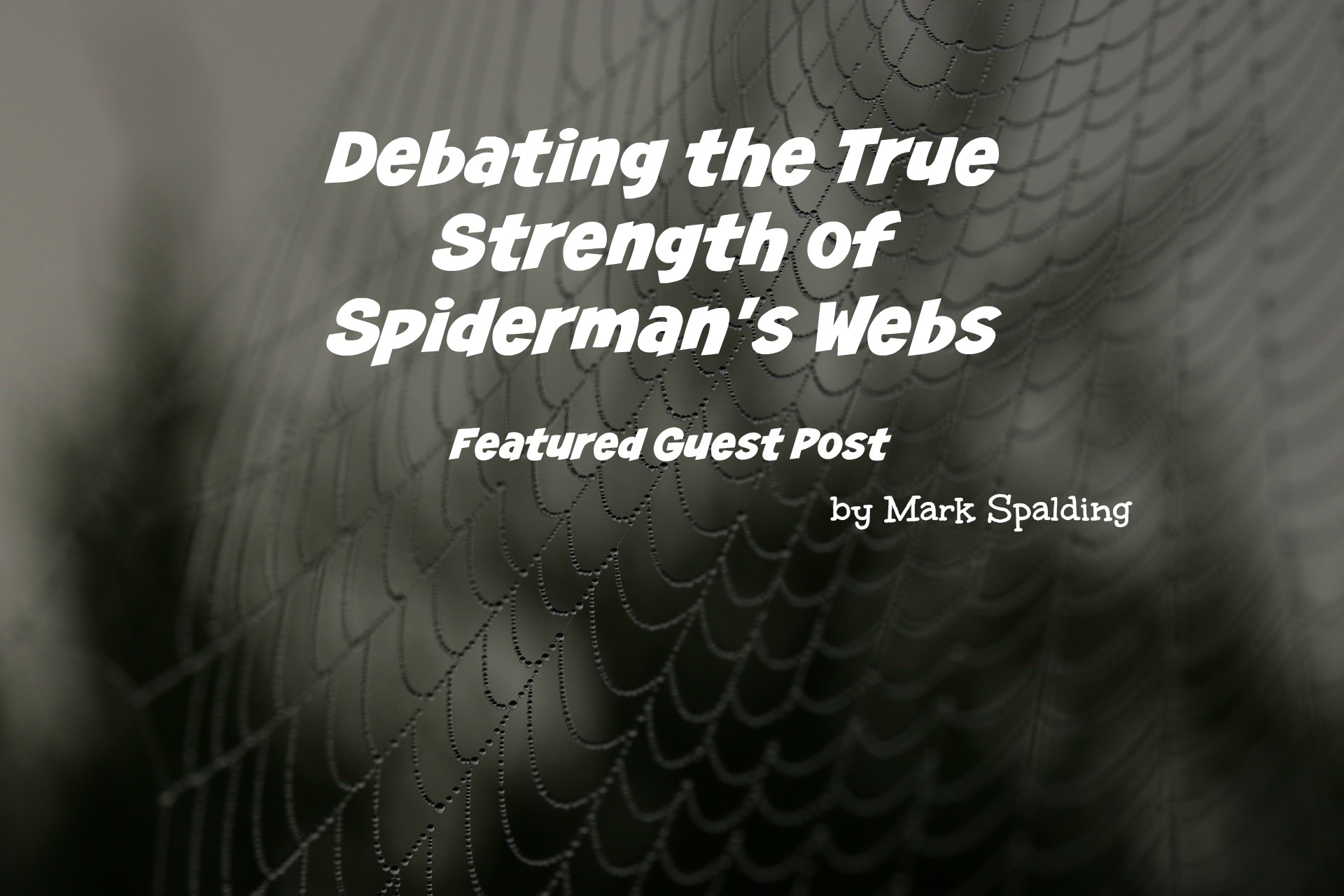 Debating the True Strength of Spiderman's Web