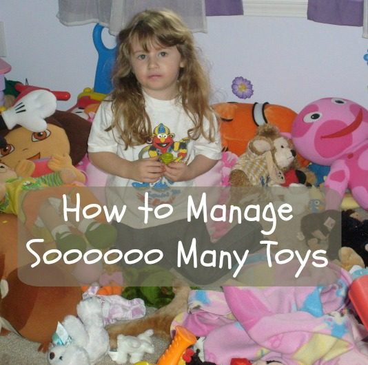 Tips for Managing Too Many Toys