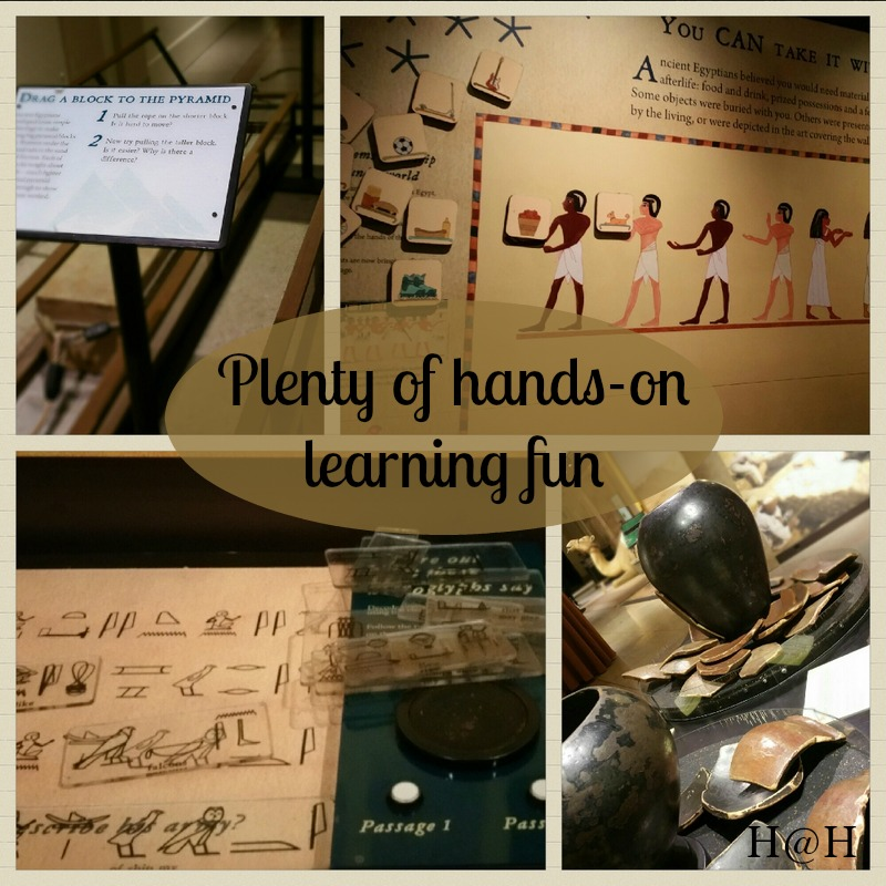 Get Lost in Learning with Lost Egypt at The Franklin