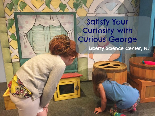 Satisfy Your Curiosity With Curious George